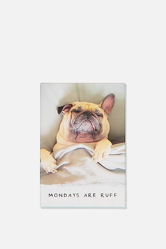 Quirky Magnets, MONDAY RUFF