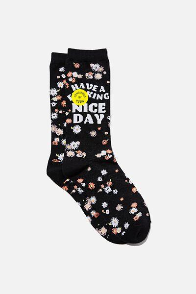 Socks, NICE F$&CKING DAY!!
