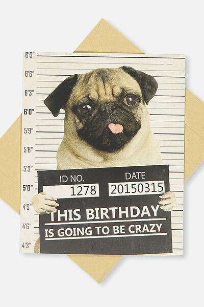Funny Birthday Card, CRAZY PUG