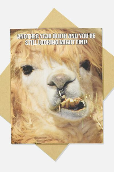 Funny Birthday Card, STILL LOOKING FINE LLAMA