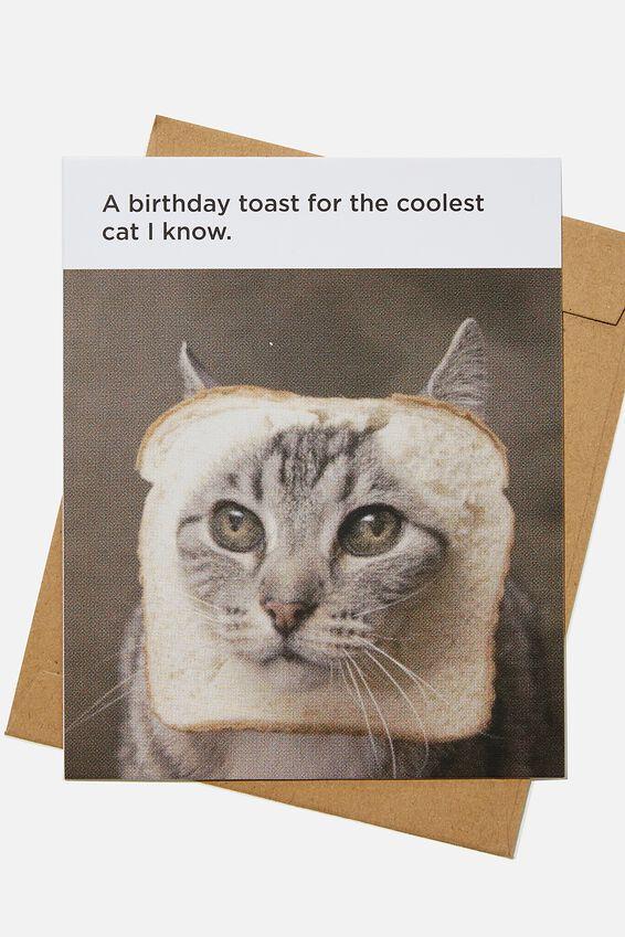 Funny Birthday Card, COOLEST CAT BIRTHDAY TOAST MEME