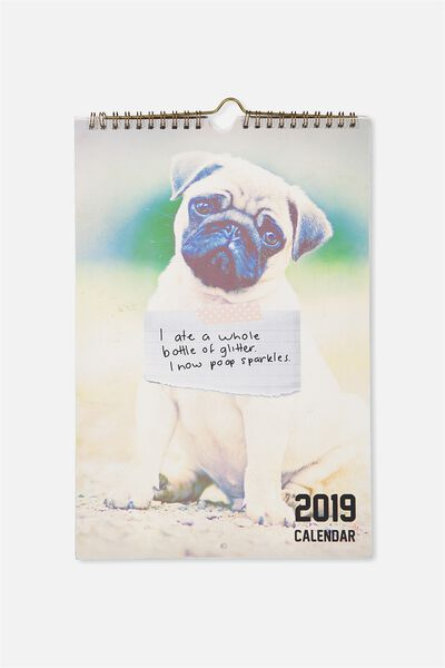 2019 Get A Date Calendar, DOG SHAMING
