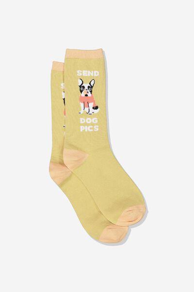 Womens Novelty Socks, SEND DOG PICS
