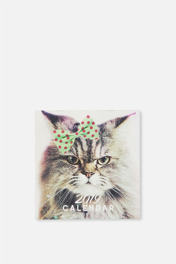 2019 Mini Square Calendar, CATS