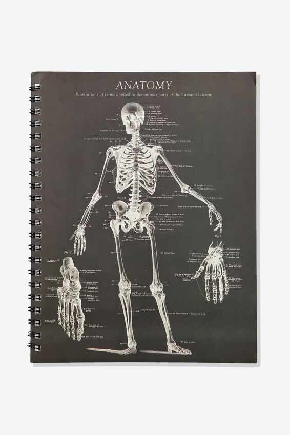 A4 Campus Notebook - Rec, ANATOMY SKELETON