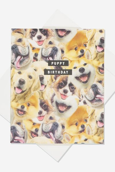 Funny Birthday Card, PUPPY BIRTHDAY