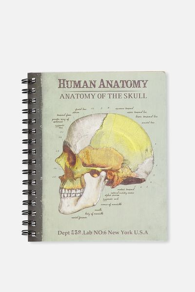 Medium Campus Notebook - 240 Pages, SKULL ANATOMY