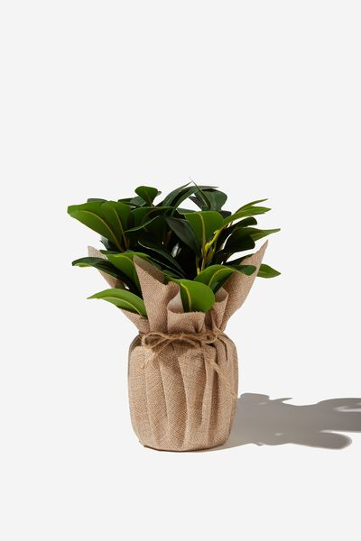 Faux Real - Mid Sized Plant, RUBBER PLANT