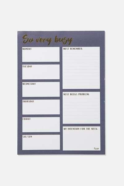 Large Plan Ahead Planner, SO VERY BUSY BLUE